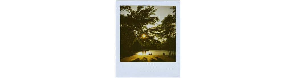 Turtle-Pond.jpg