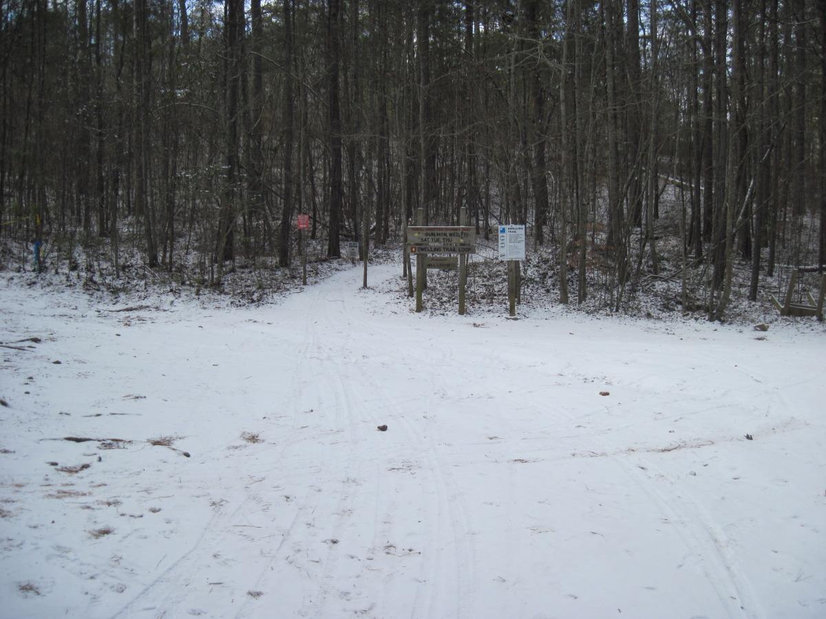 snow day 2010 090.jpg
