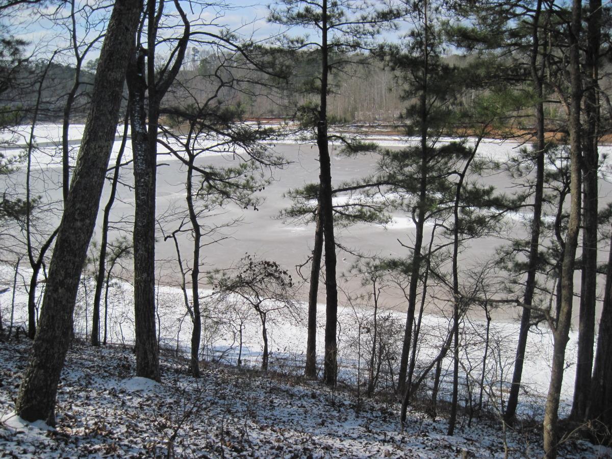 snow day 2010 097.jpg