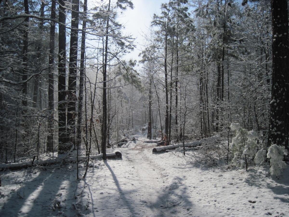 snow ride 002.jpg