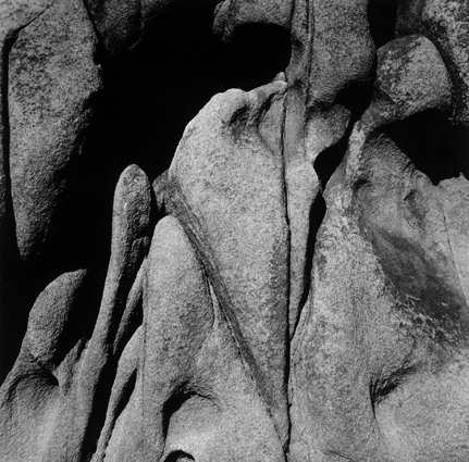 Rockface Joshua Tree.jpg