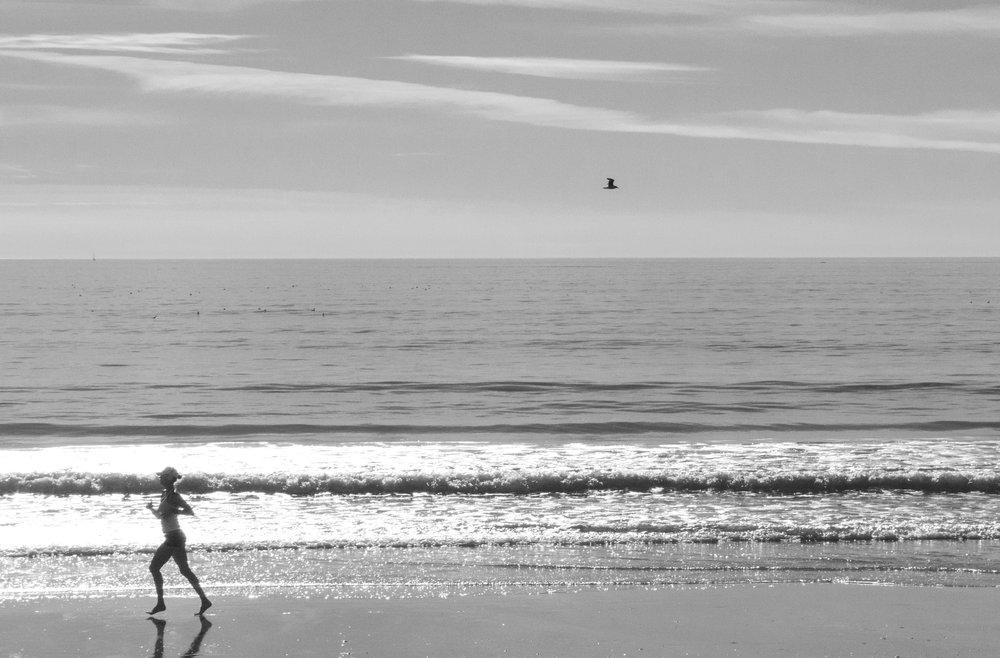 runner&bird.jpg
