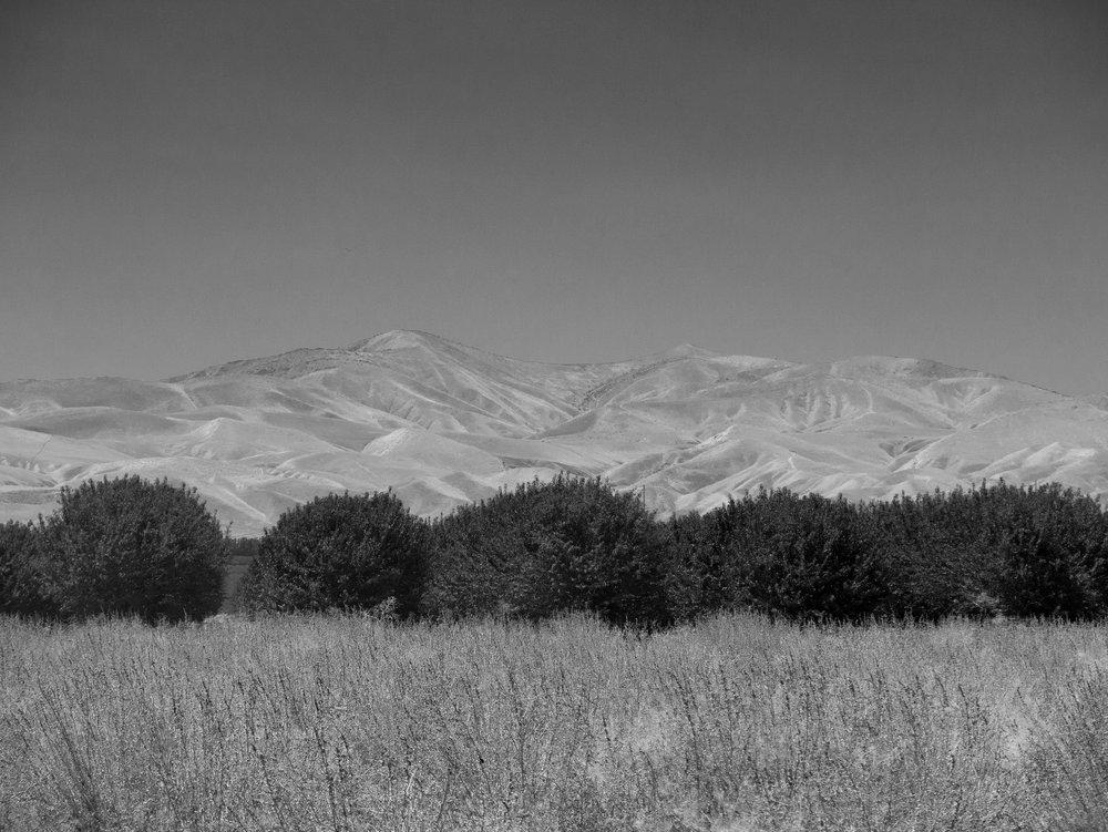 field&Mts.jpg
