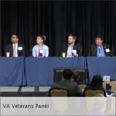 VA-panel.png