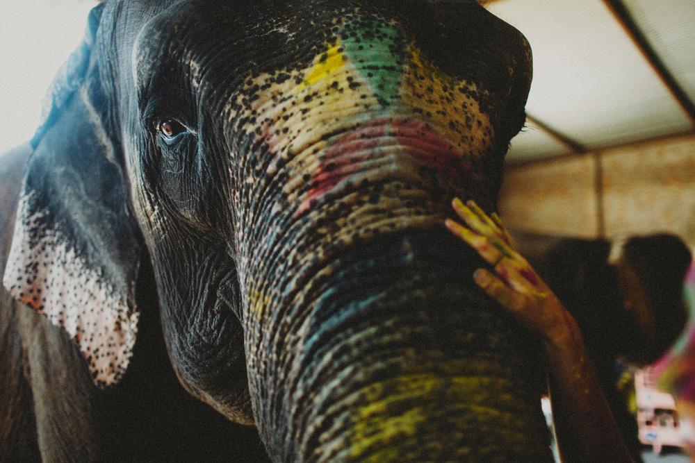India138A.jpg