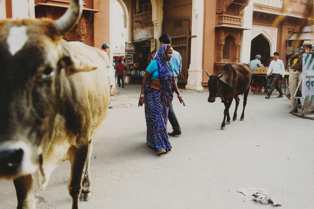 India86A.jpg