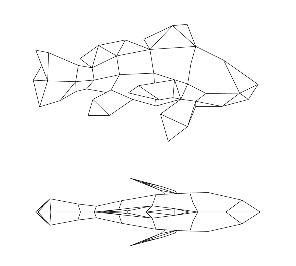 fish elevation plan.jpg