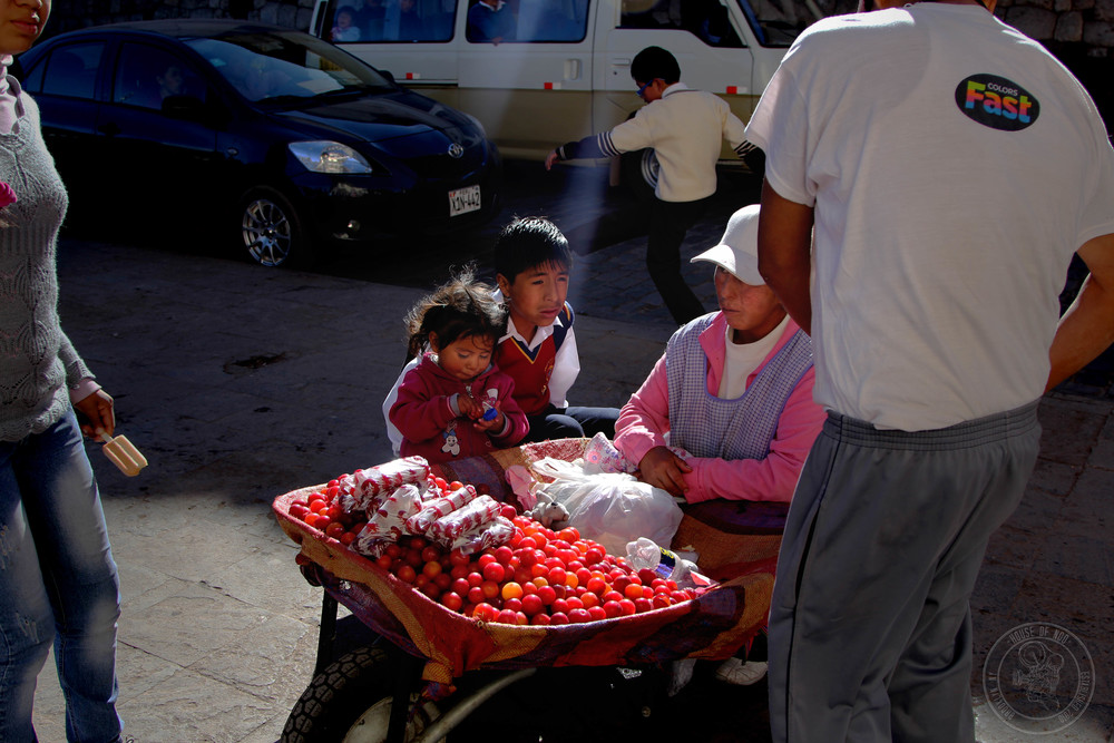 family selling fruit.jpg