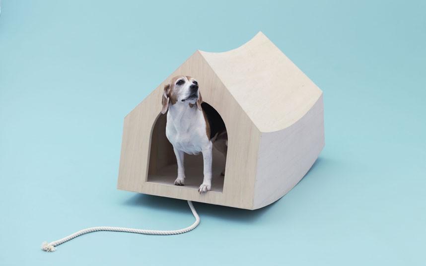 beagle-house_2405310k.jpg