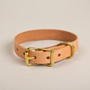 Canine-Collar-thumb-15_1_large.jpg