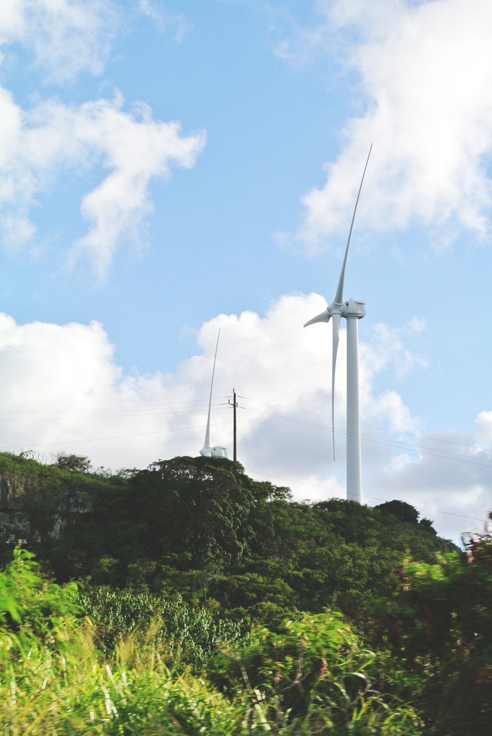 On the road back from the falls: Kahuku Wind is comprised of 12 wind turbines, with a total generating  capacity of 30 MW. The project can produce enough power for up to 7,700  homes on Oahu.