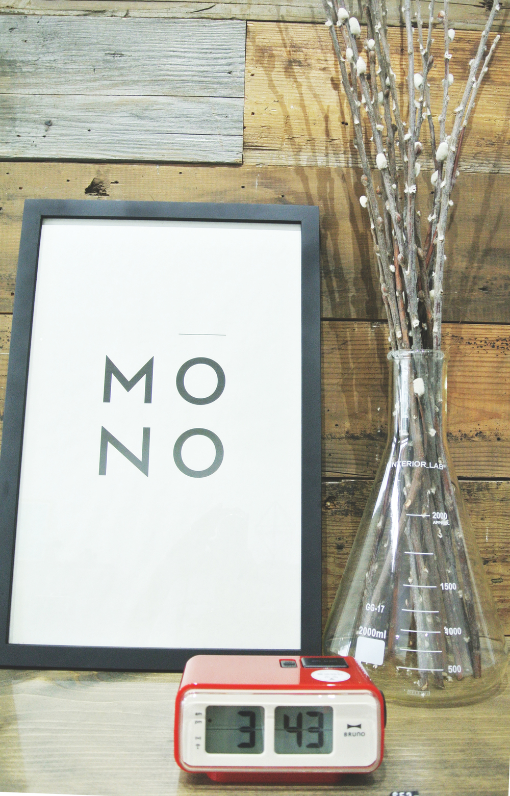 mono19.jpg