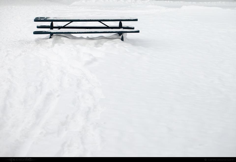 el-paisaje-8469p.jpg