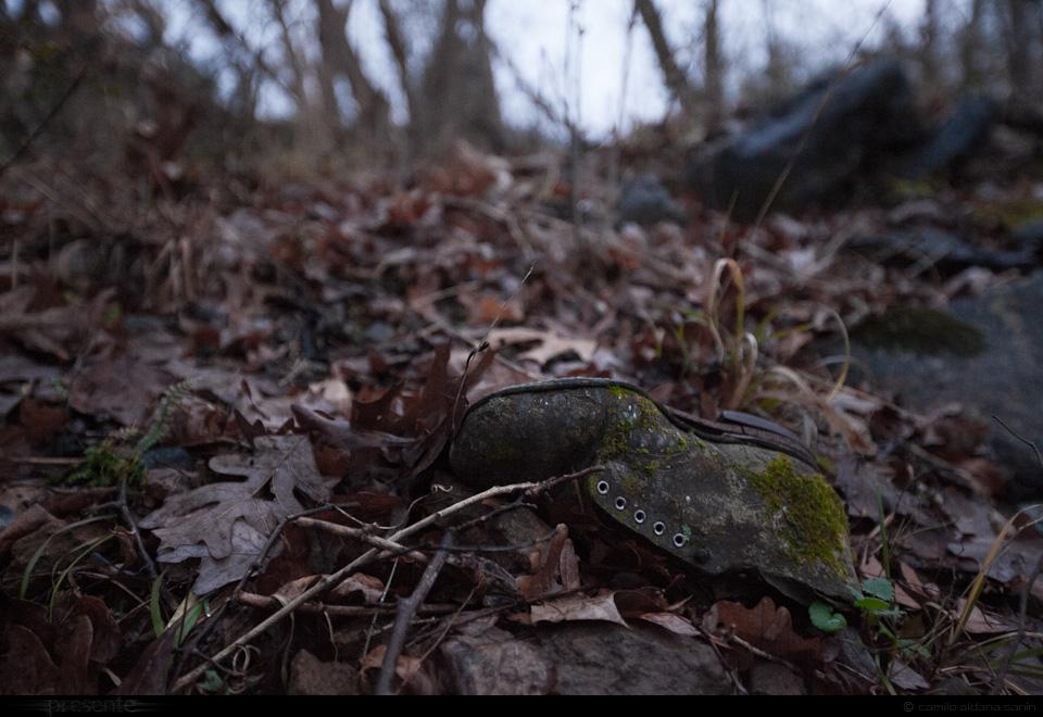 naturaleza-muerta-9542p.jpg