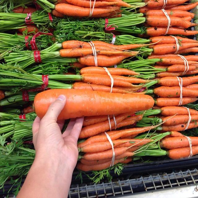 Chubby carrot!