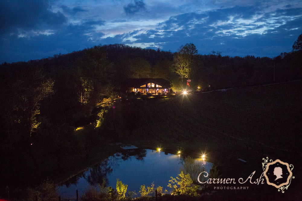 0987-Rodgers-Wedding-Carmen-Ash-vineyard.jpg