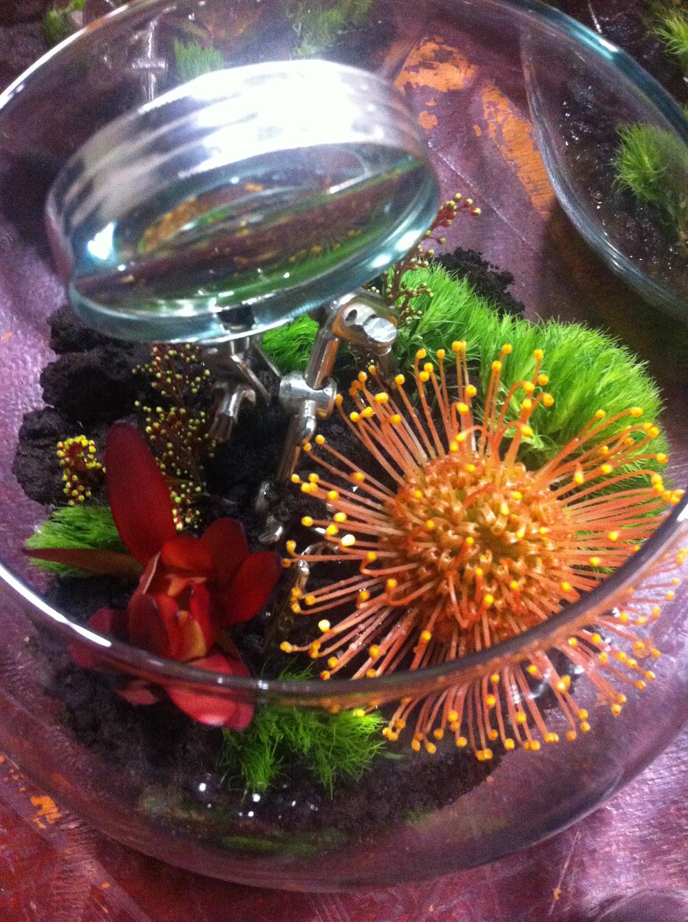 SScwflowers2.jpg