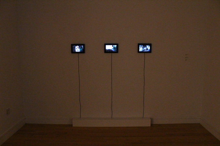 Installation view, Melancholy Birthday, What Will Become Of Her, and This Is My Life, 2011