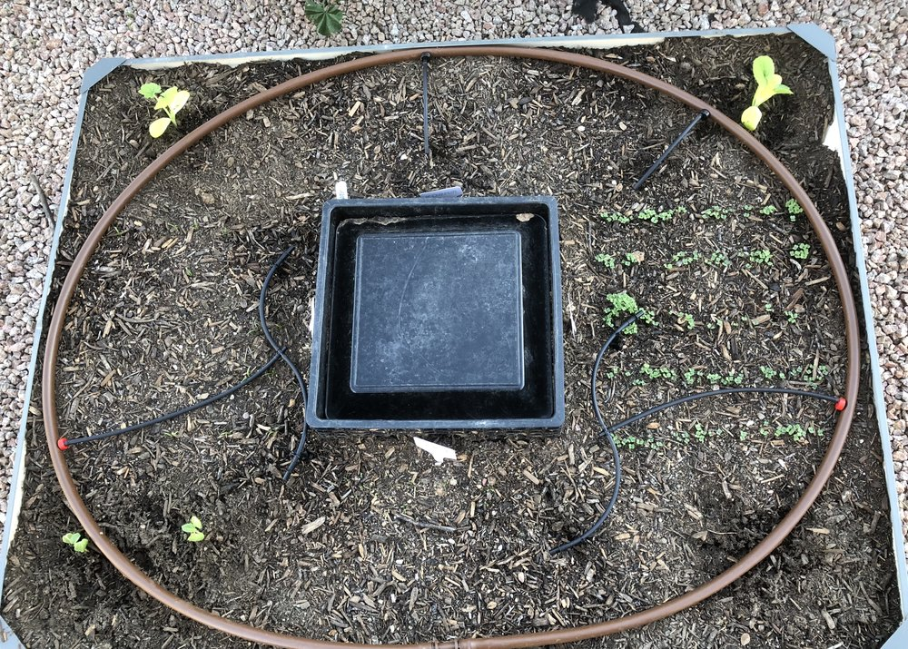 raised bed with embedded worm habitat