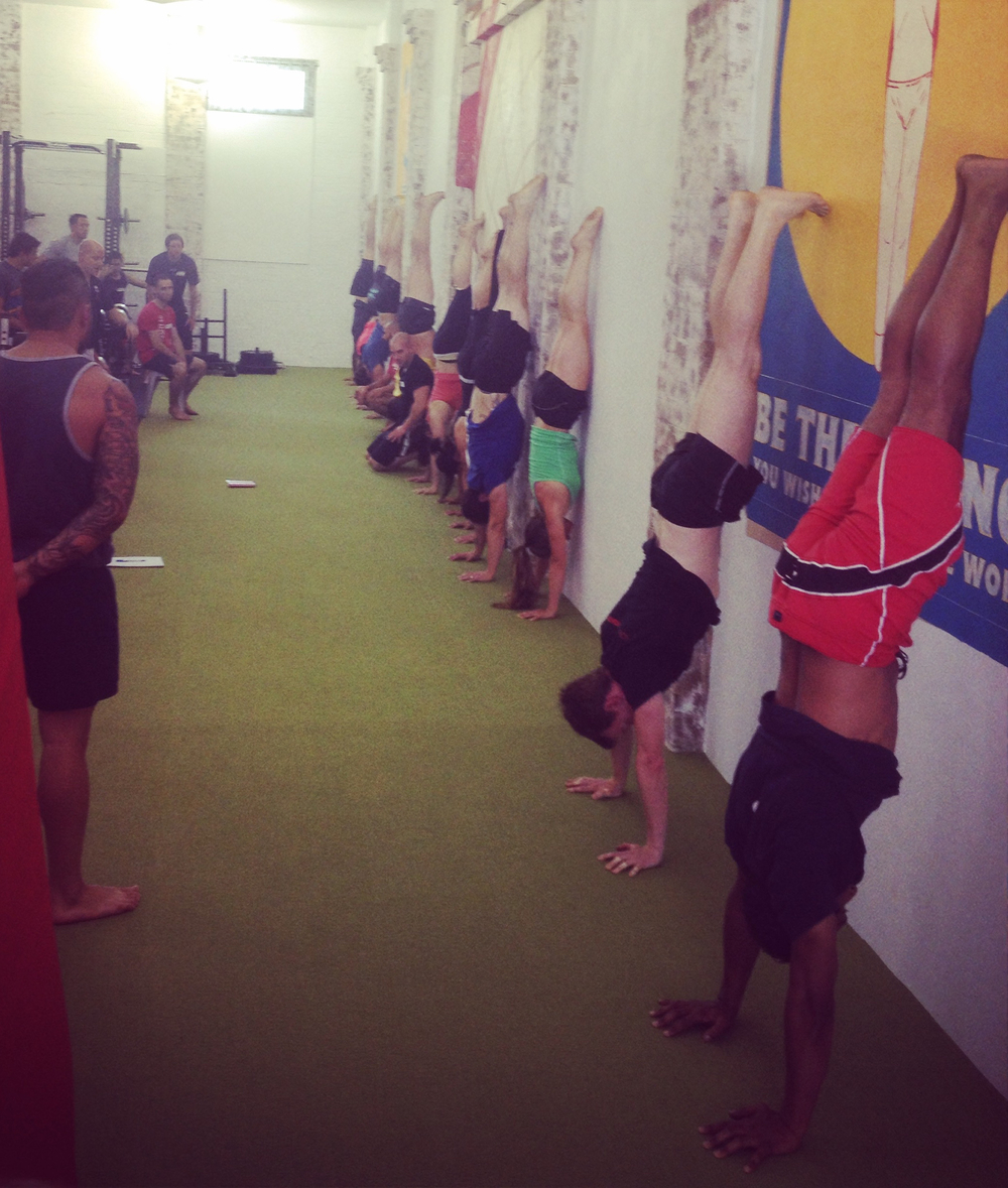 Working on some handstand progressions with Coach Sommer.