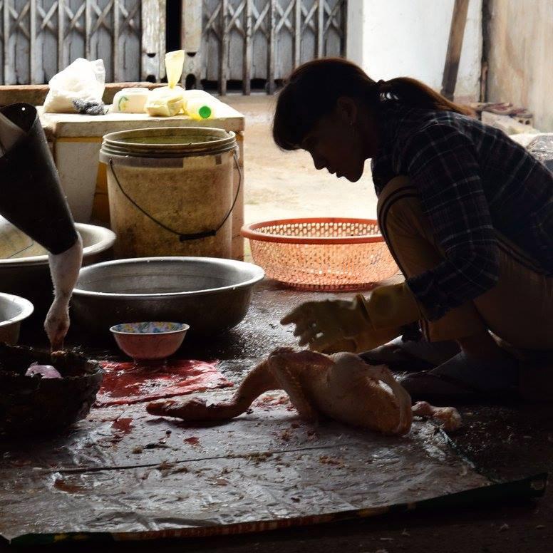 Dalat  VIETNAM  2015