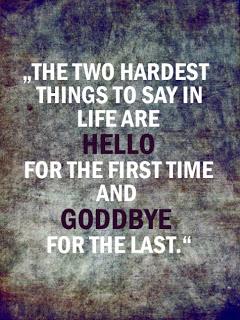 hello-goodbye.jpg