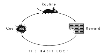 habit_loop.png
