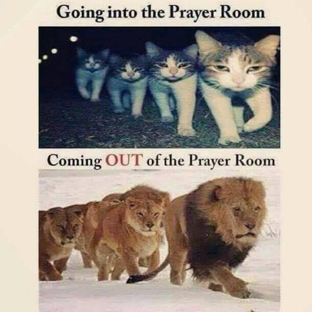 """Somebody posted this picture in a group I follow as part of a conversation about prayer group. The person who posted it was, I believe, critical of the image. My thought as soon as I saw it was that the pictures should be opposite: shouldn't prayer be a humbling experience?"""