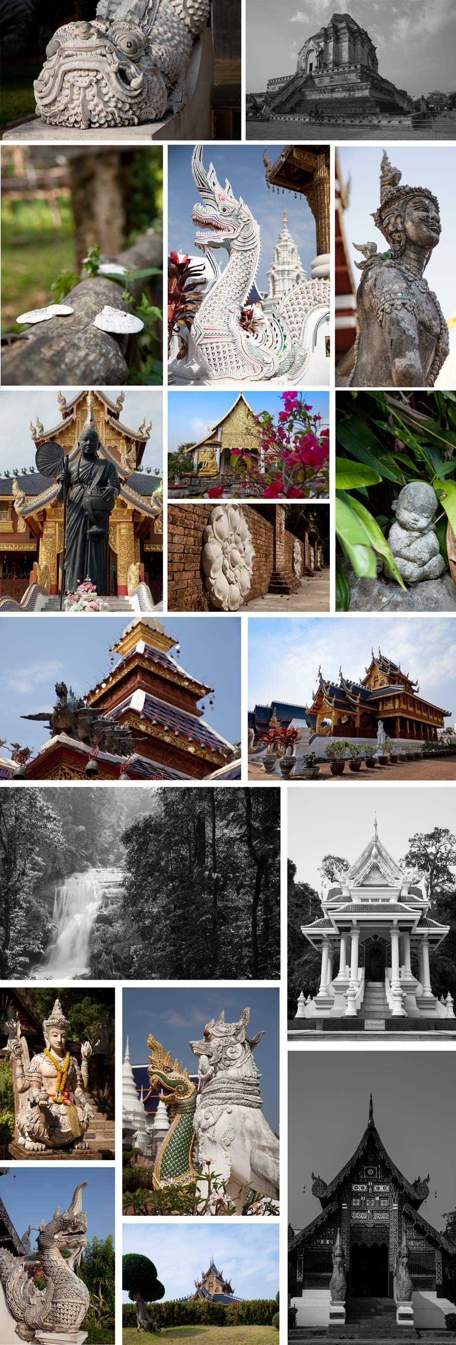 chiang mai_blackrabbitphotography_travel.jpg