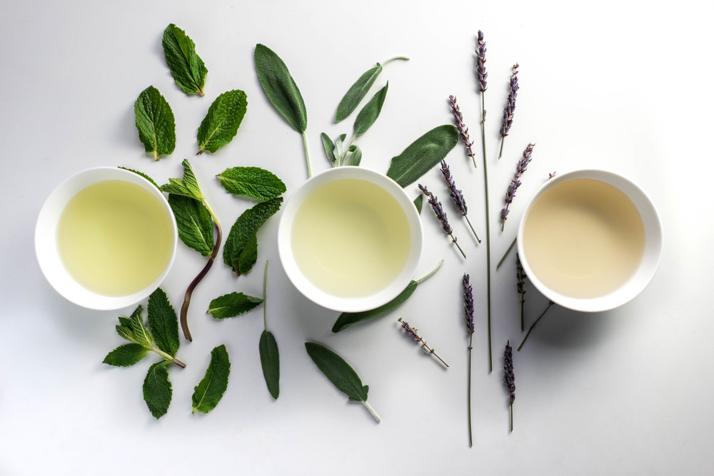 Best Herbs For Skin Care