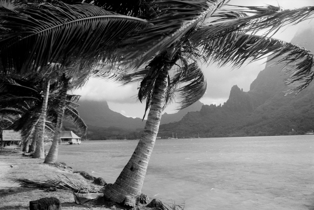Cooks_Bay_Moorea_French_Polynesia.jpg