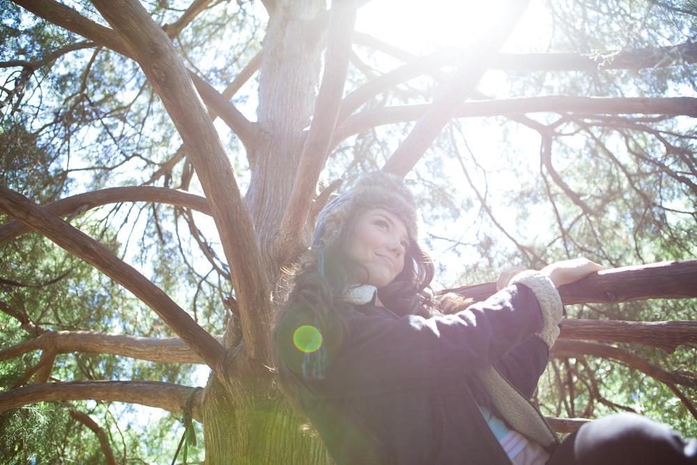 Climbing_Tree_Sun_Flare.jpg