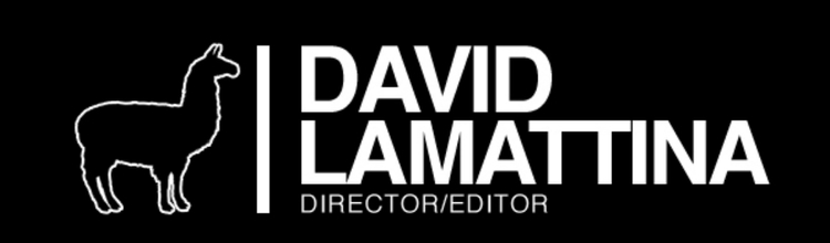 DAVID LAMATTINA