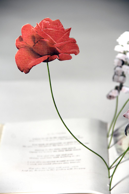 Flowers detail 1.jpg