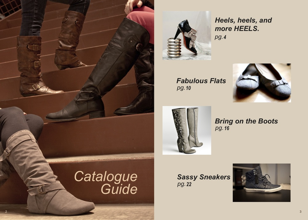 DSW catalogue v5m.jpg