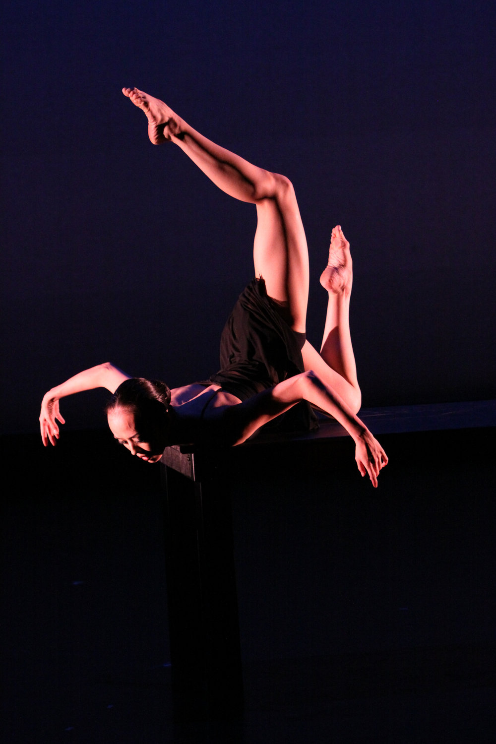 LAFA & Artists Dance Company (U.S. debut). Jacob's Pillow Dance Festival, 2009.