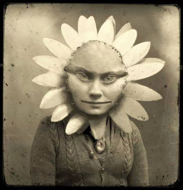 Halloween Gerber Baby (950).jpg