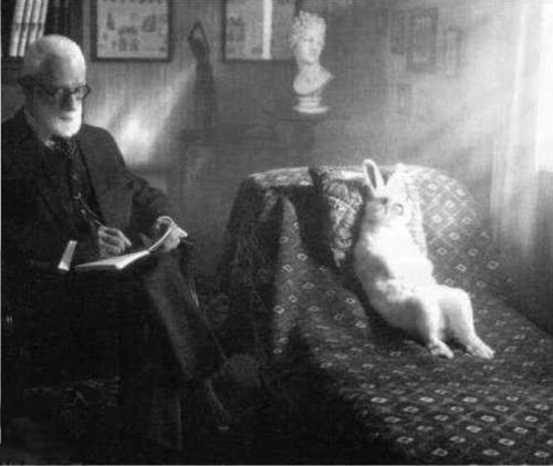 Easter Bunny Freud (628F).jpg