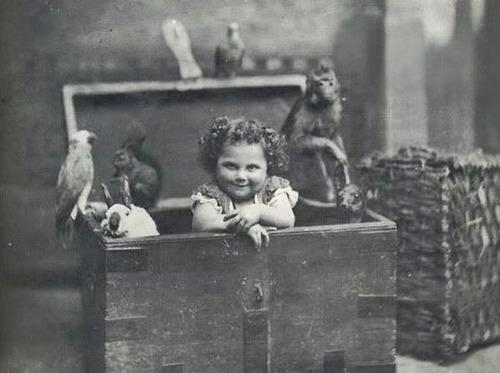 Sybil in Trunk with Animals 2.jpg