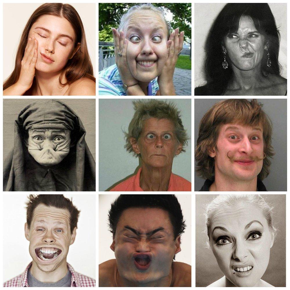 2019 democratic Presidential Collage.jpg