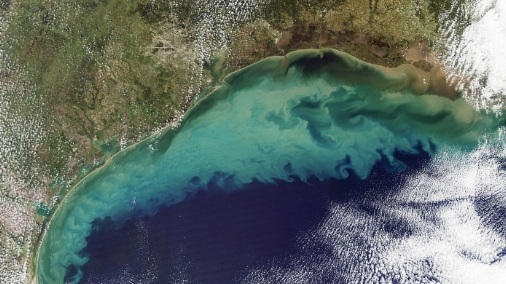 The Ocean Is Running Out of Breath, Scientists Warn   |SCIENTIFIC AMERICAN, February 2019|
