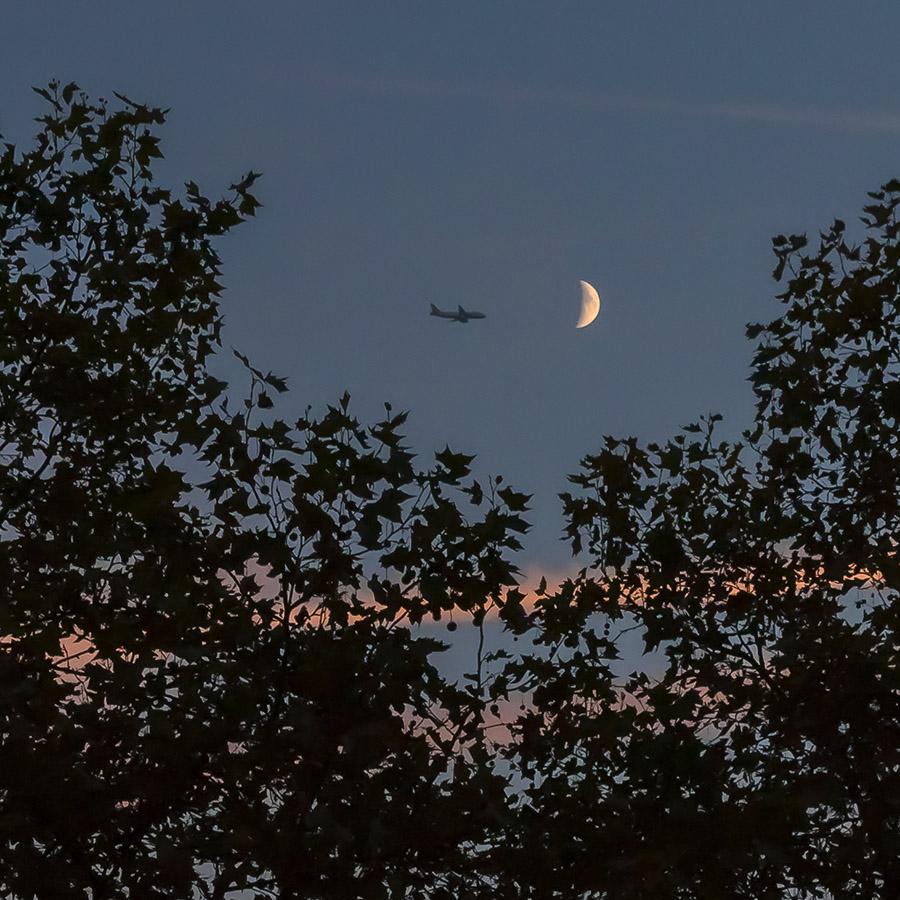 Moon_Plane_Insta.jpg