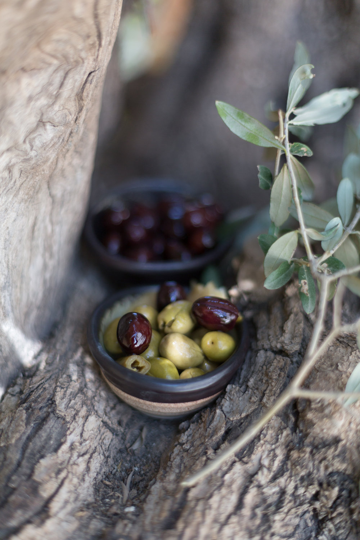 Olives_Web-48.jpg