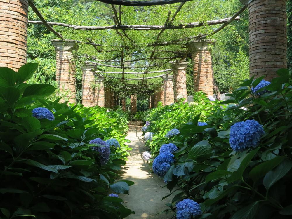 Gardens @ Villa Cimbrone
