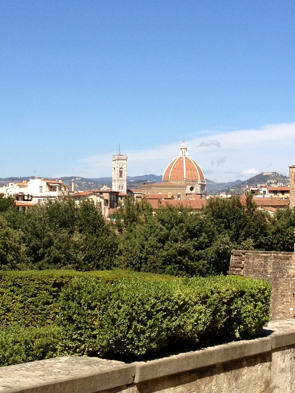 View of Florence, Italy from Boboli Garden