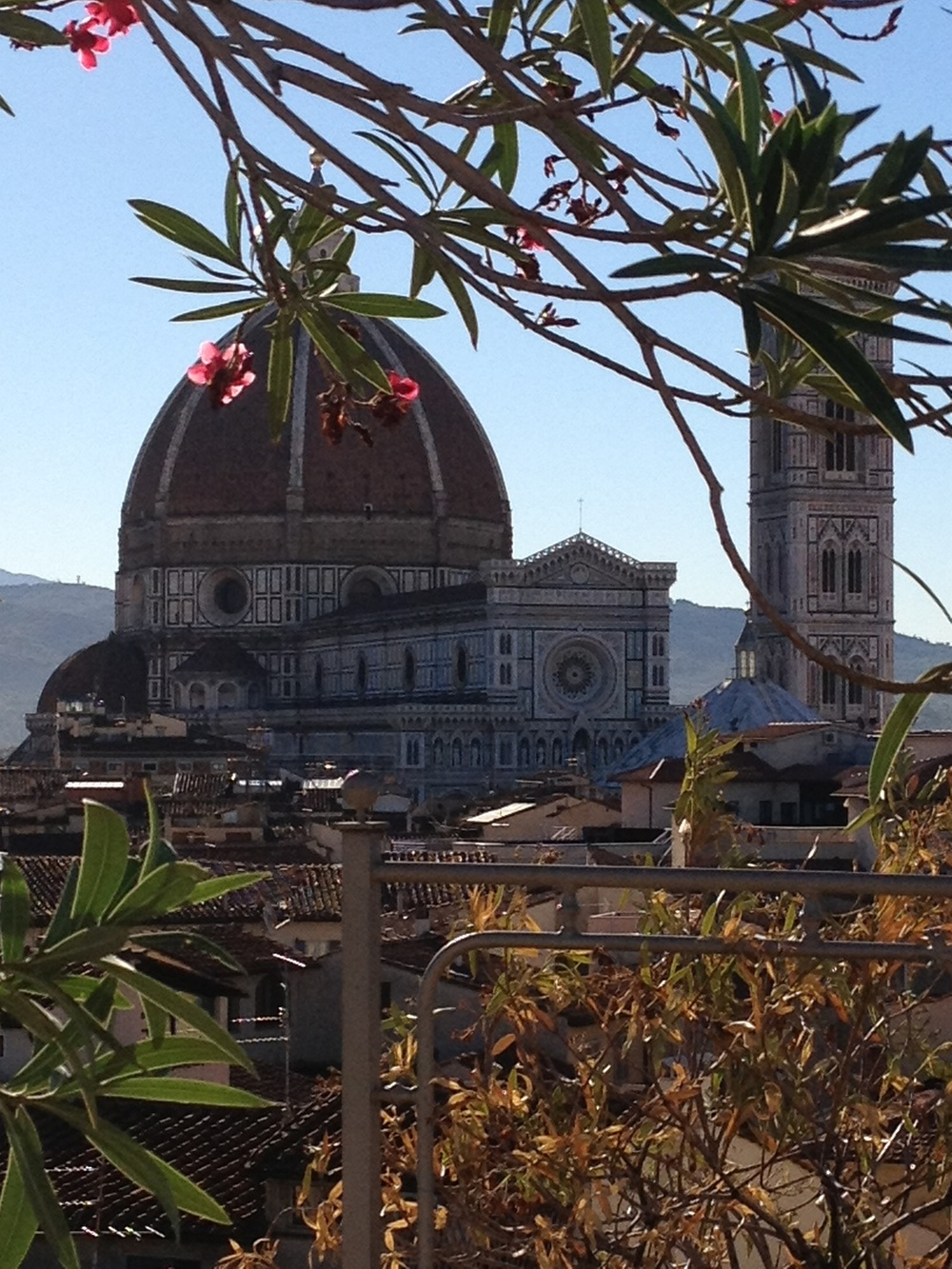 Duomo/Brunelleschi's dome from rooftop of Grand Hotel Baglioni
