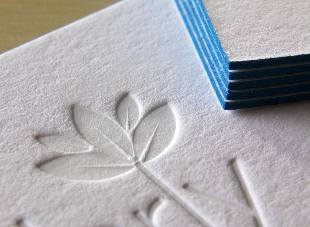 card_CEDARLY_3213 web.jpg