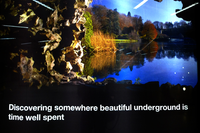 discovering somewhere beautiful is time well spent.jpg