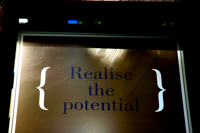 realise the potential.jpg