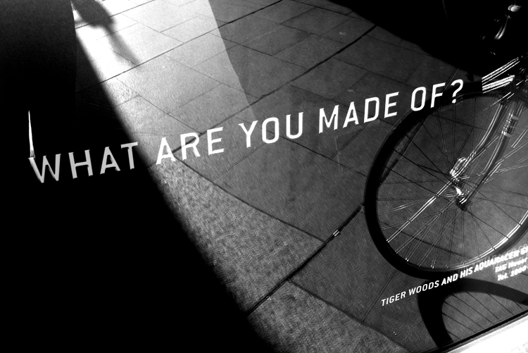 what are you made of.jpg